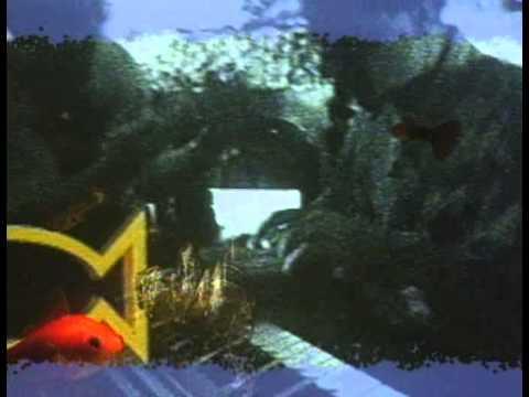 TenSharp-You (1991)