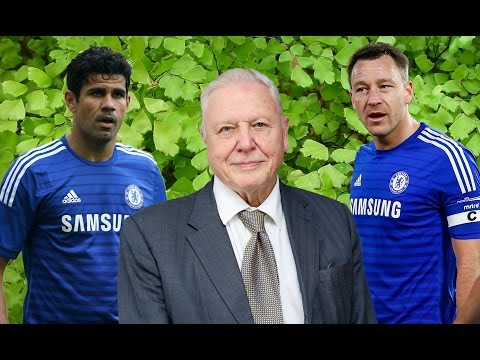 David Attenborough Meets Chelsea FC